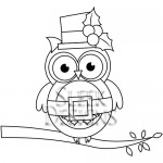 Sleek Designs - Christmas Owl