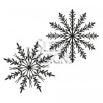 Sleek Designs - Snowflake Duo